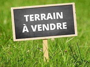 TERRAIN 0 pièce(s)